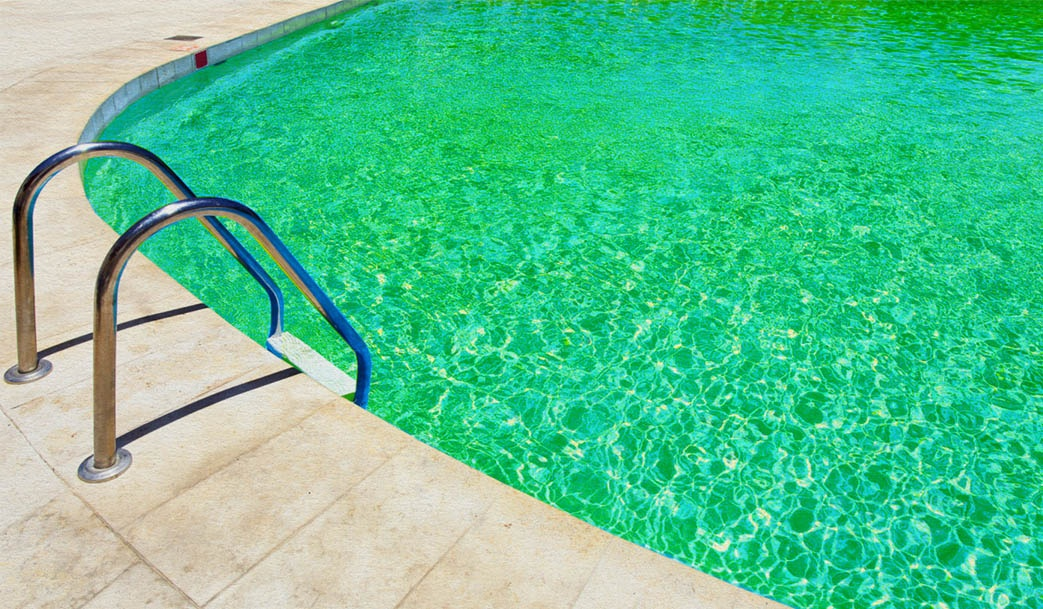 A Swimming Pool with Green Water
